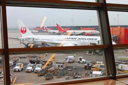 JAL787デリー空港