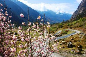 ユムタン谷へ続く道